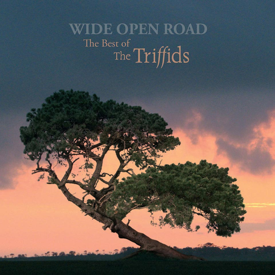 The Triffids - Wide Open Road: Best Of