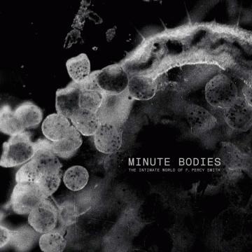 Tindersticks - Minute Bodies: The Intimate World Of F. Percy Smith